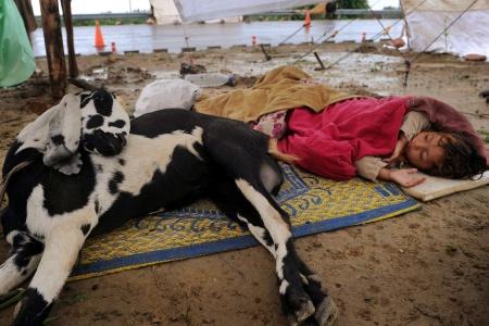 A. Majeed/AFP