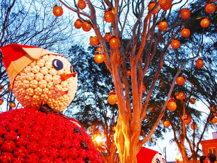guararema-decoração-natal-g-20101213