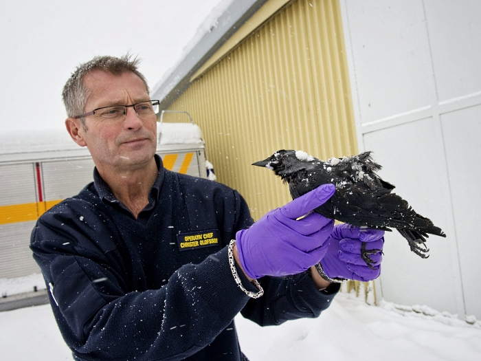 Bjorn Larsson Rosvall/05.01.2010/AFP