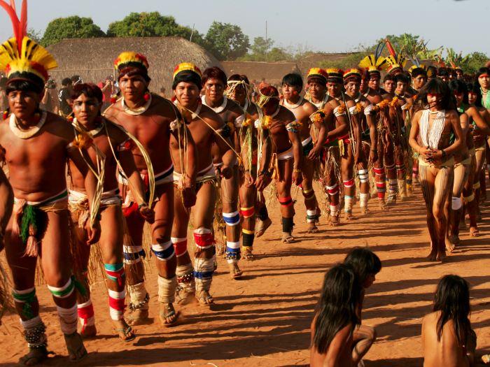 Ndios Brasileiros  Brazilian Indians