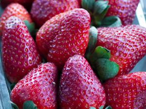 Projeto verão: emagreça com dieta gostosa e saudável - Receitas e ...