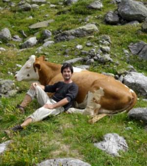 homem vaca