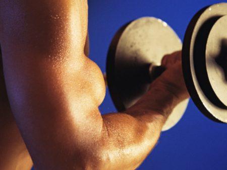 Musculação Músculos