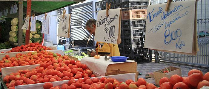 tomate-feira-tl-20110505