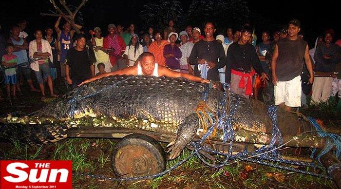 crocodilo-gigante-hg