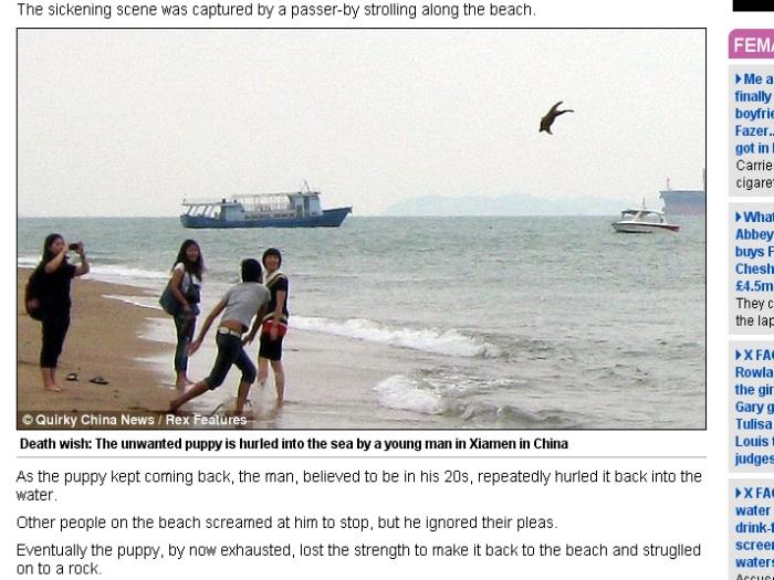 Filhote jogado ao mar