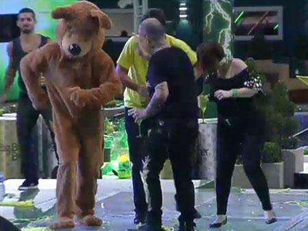 Urso invade a festa