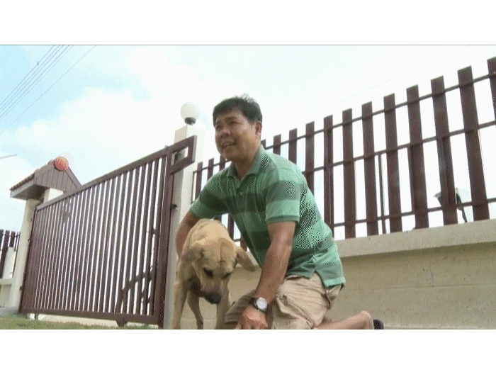 Tao Tao e seu dono