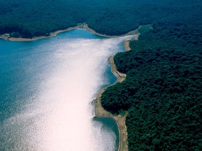 Reserva-Florestal-do-Morro-Grande