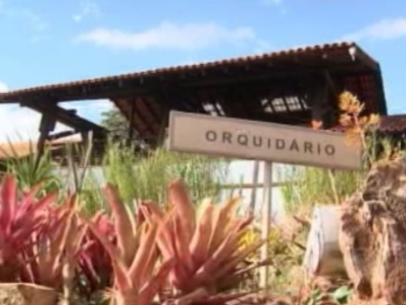 O orquidário do Jardim Botânico do DF reúne várias espécies do Brasil e do mundo