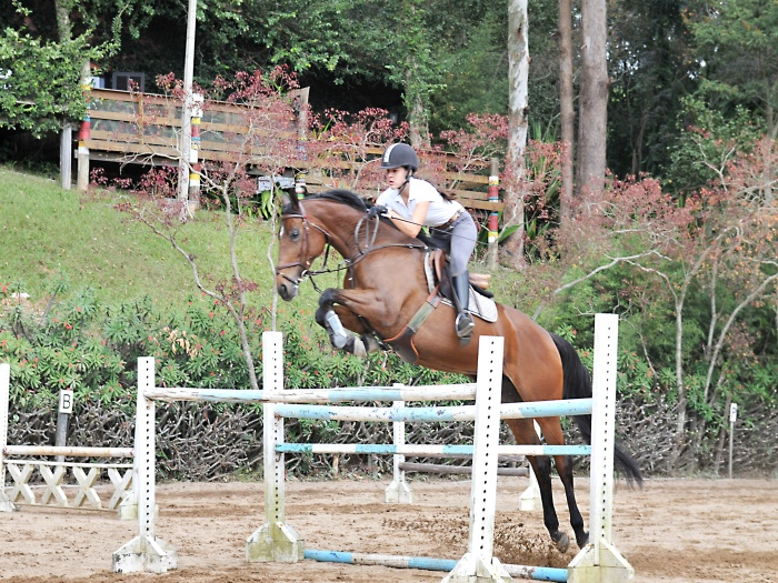 spa_7Voltas_cavalos