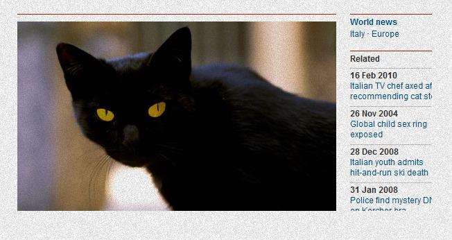 Tommaso, o gato mais rico do mundo