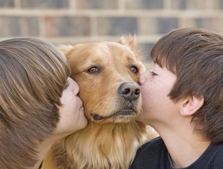 Beijando cachorro