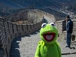 Site com memes de sapo dos Muppets diverte internautas com fotos inusitadas